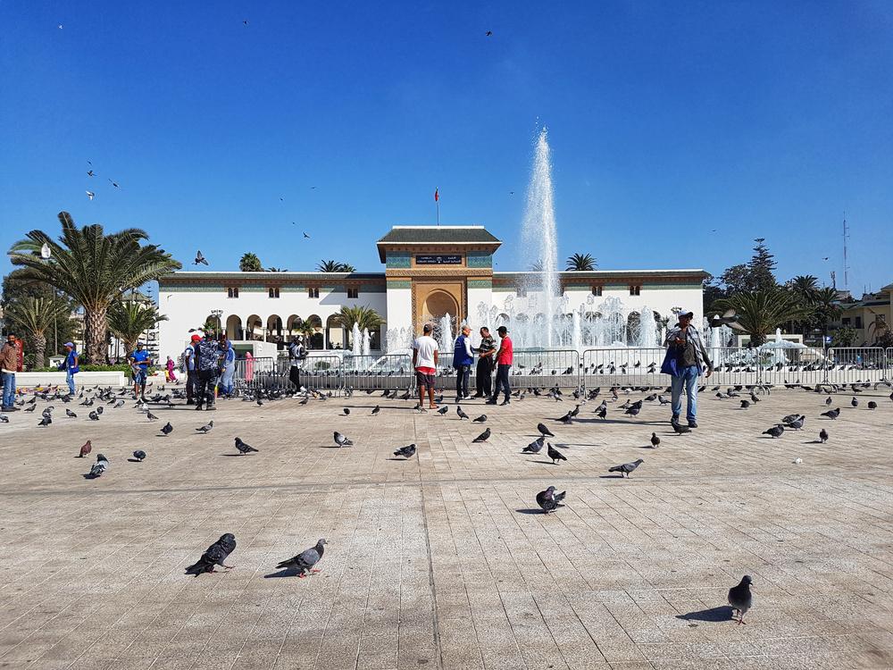 Rivestimento Casablanca : Andrea maffei architects urban center casablanca